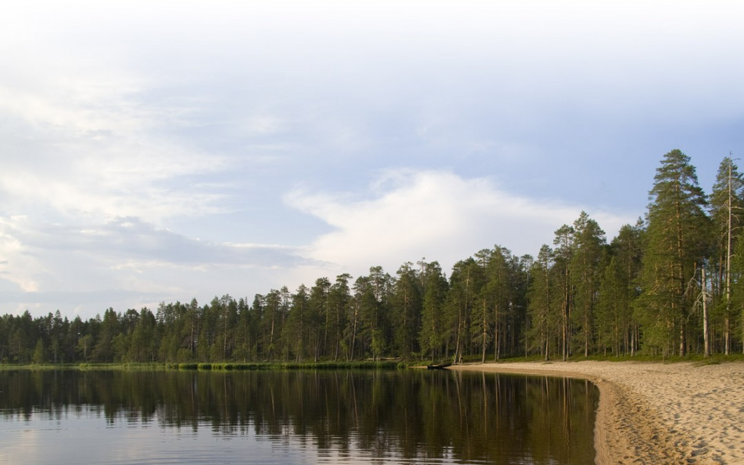 Risti ja Kruunu – Tiilikkajärven kansallispuisto