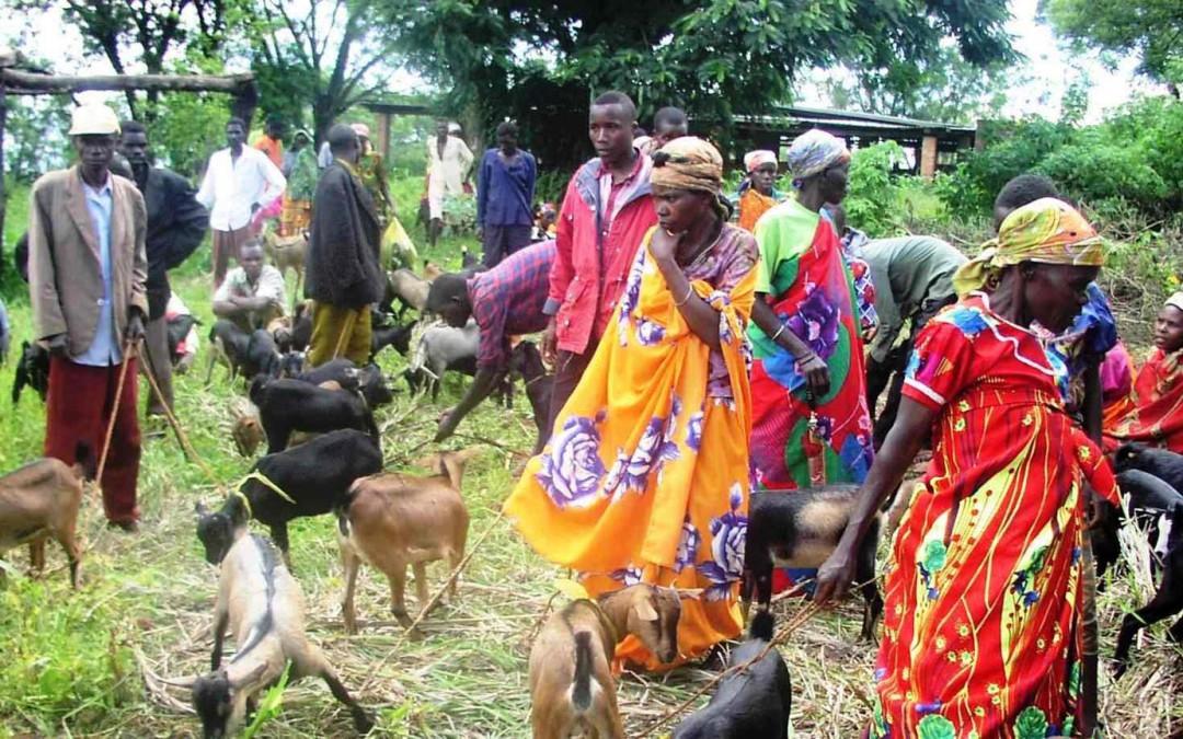 Burundi uuden kansanmurhan kynnyksellä