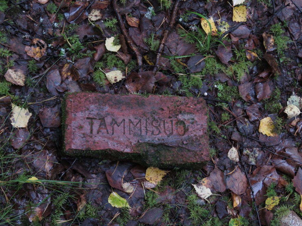 Tammisuolla oli ennen sotia suuri tiilitehdas, jonka tuotteita löytyi em. BT-42 :n tuliaseman läheltä keskeltä metsää.