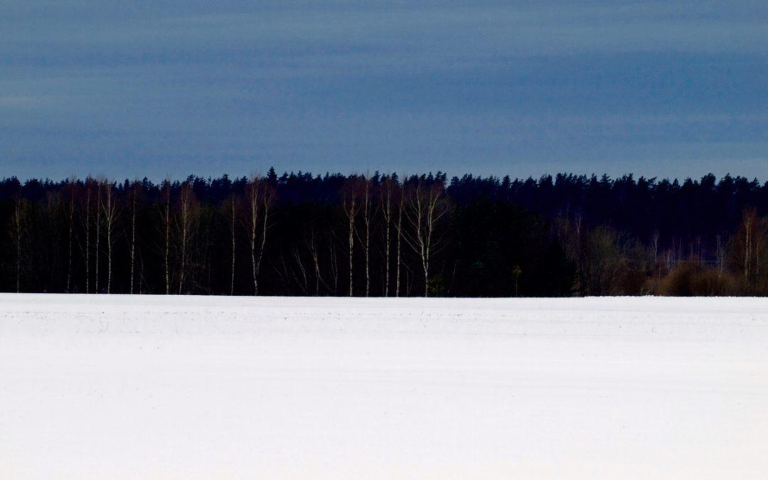 Sata vuotta Viron itsenäisyyttä